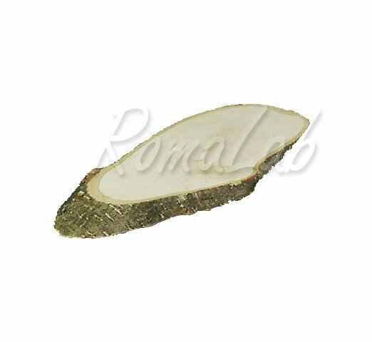 Sezione di albero in LEGNO naturale 20 23 CM ORNAMENTI SCRAPBOOKING Tree Slice 291803456850