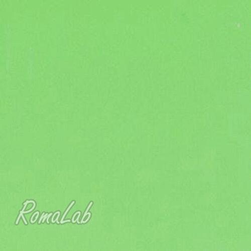 FOGLIO DI GOMMA CREPLA verde 30X45 CM SPESSORE 2 mm MOOSGUMMI PER SCRAPBOOKING 301988553671