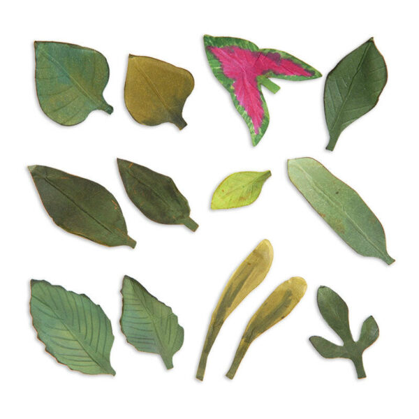 1 SET DI FUSTELLE PER BIG SHOT SIZZIX Thinlits Die Set foglie piante Leaves 292517440738
