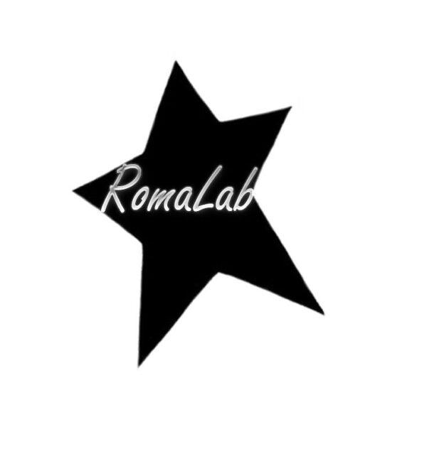 1 PERFORATORE GRANDE FUSTELLA PER SCRAPBOOKING FORMA stelle stella star natale 291808431379